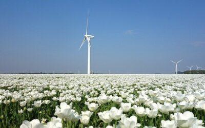 Energietransitie: De inwoner als partner en ervaringsdeskundige